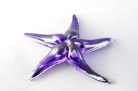 Weston Glass starfish